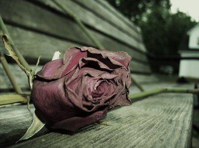 sad-love-a