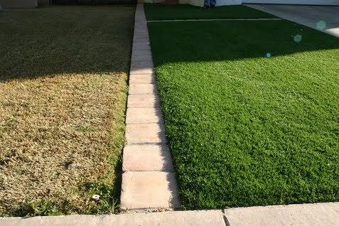 greenergrass